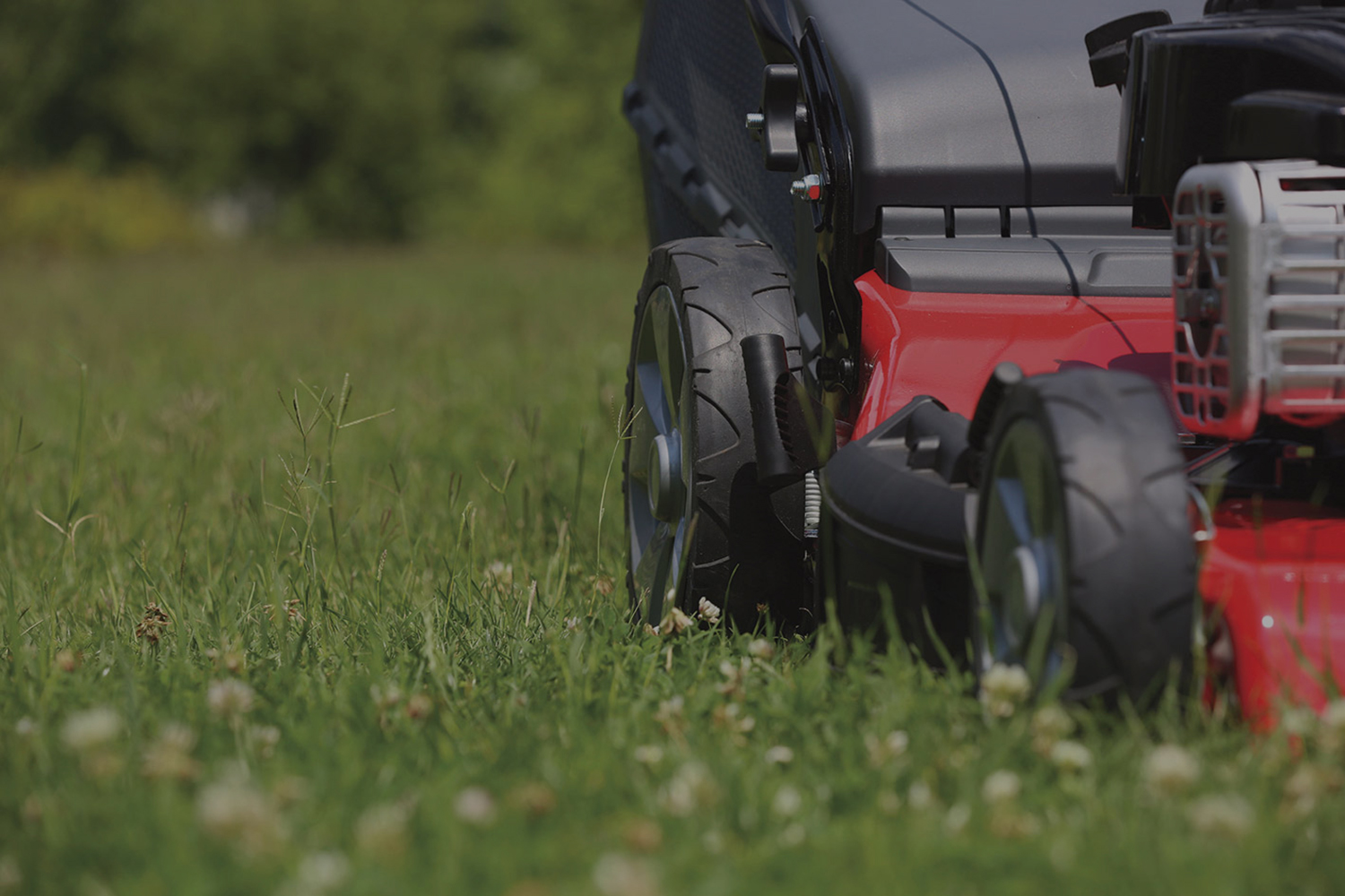 image of mowing lawn. part of our garden maintenance programme